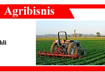 Pengertian-Agribisnis-Menurut-Para-Ahli